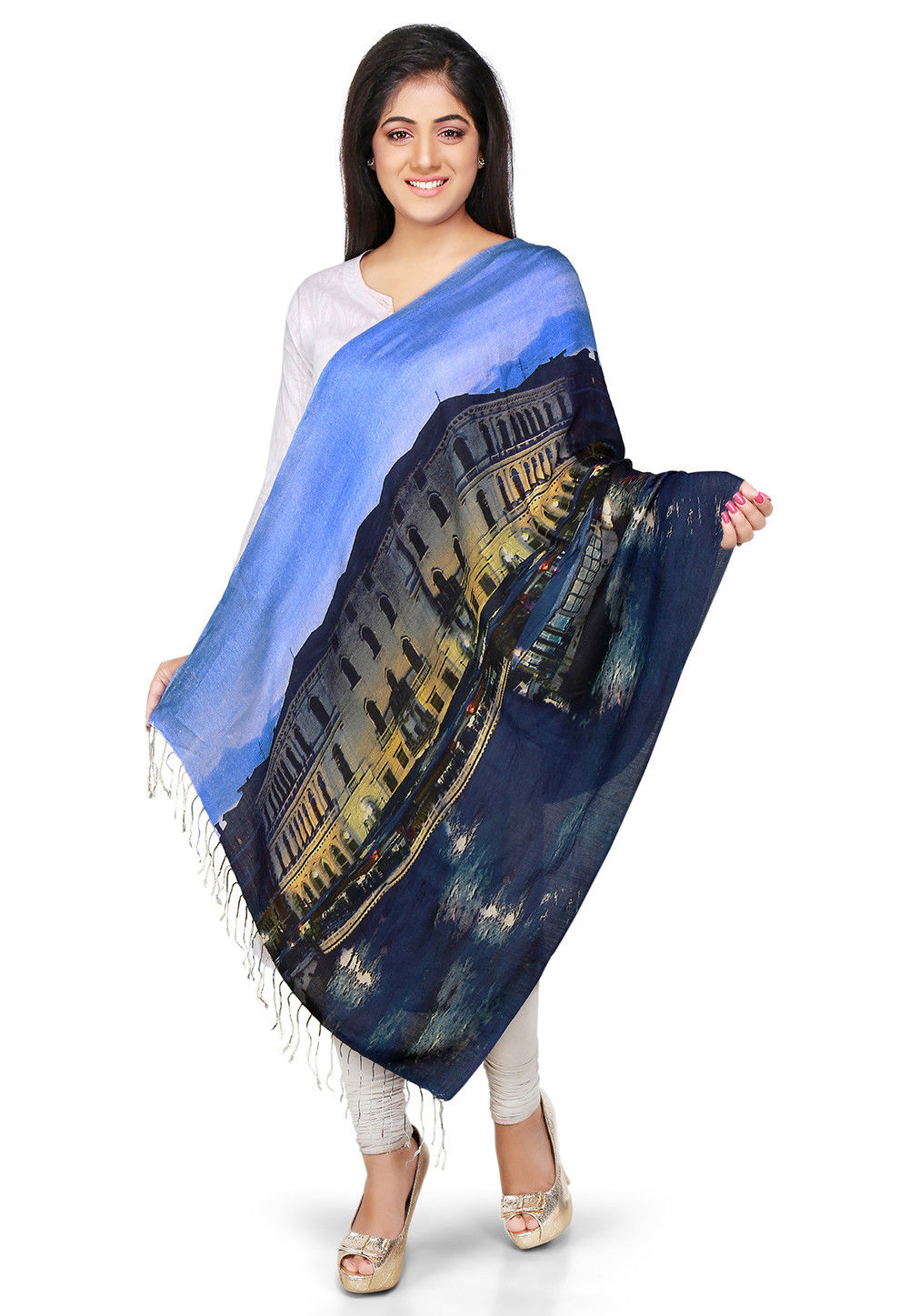 Printed Woolen Stole in Blue