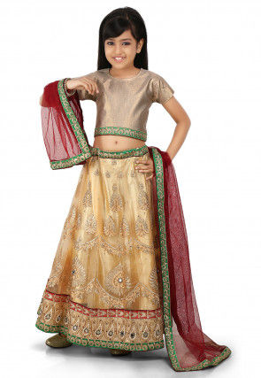 Embroidered Net A Line Lehenga in Beige