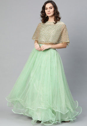 Embroidered Net Cape Top with Skirt in Pastel Green