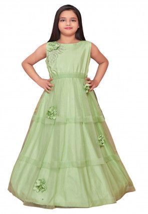 Embroidered Net Gown in Light Green