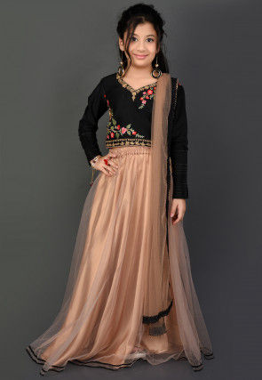 Embroidered Net Lehenga in Beige