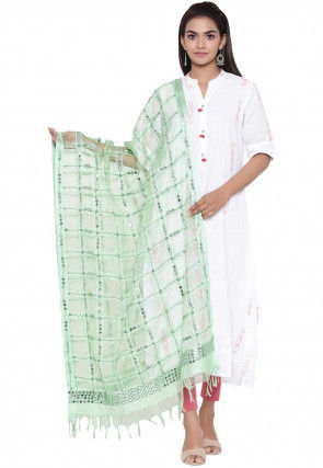 Embroidered Organza Dupatta in Pastel Green