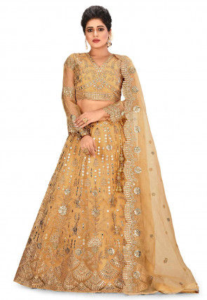 Embroidered Tissue Lehenga in Beige