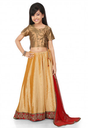 Embroidered Patch Border Velvet Lehenga in Beige