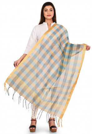 Woven Noil Silk Dupatta in Sky Blue and Multicolor