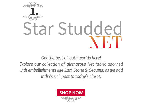 Embroidered Net Sarees for modern Ethnic Lovers. Shop!