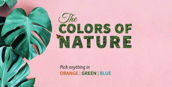 Green, Blue, Orange ensembles. Shop!